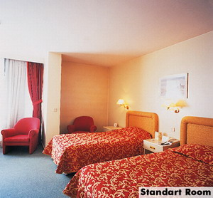 dedeman ankara hotel twin room picture