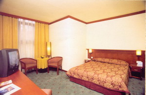 Houston hotel ankara hotel double room picture