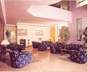 Houston hotel ankara lobby picture