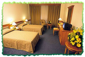 Euro Plaza Hotel Twin Room Picture