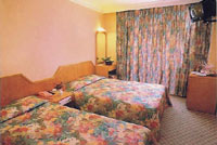 Grand Yavuz Hotel Twin Room Picture