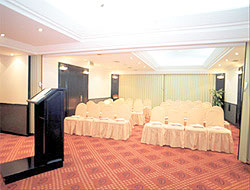 Gunes Hotel Meeting Room Picture