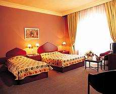 Vardar Palas Hotel Twin Room Picture